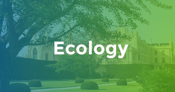 Ecologies Definition